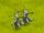 Crossbow Whisperers