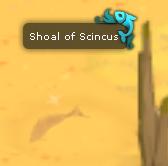 Shoal of scincus.png