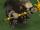Friar Tubs