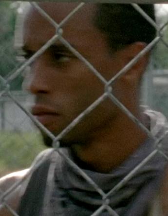 Prison Newcomer (TV Series)