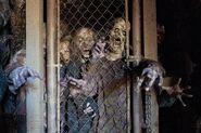 FTWD 6x10 Ugly Walkers
