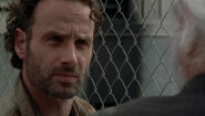 Arrow Rick