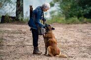 10x18 Carol and Dog
