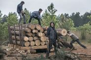 9x02 Daryl is logging around