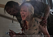 Amy killed