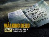 Season 5 (TV Series)