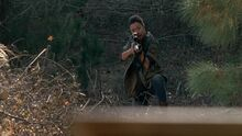 513 Sasha in Woods.jpg