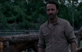 Rick.S4.3
