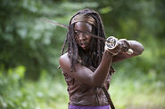 New Michonne 1