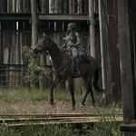 9x02 Michonne entrance to Hilltop.jpg