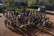 816 survivors crowd