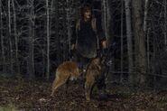 11x04 Daryl and Dog