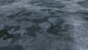 NGB Dont Help Luke And Dont Break Ice.jpg