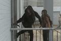 10x02 Alpha and Lydia escape