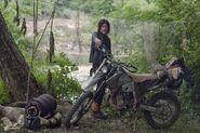 DarylBikeCamping