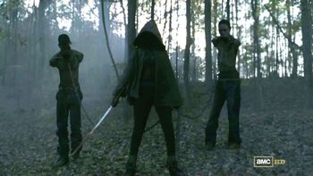Grupa Michonne (Serial TV)