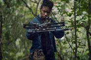 10x17 Kelly and Crossbow
