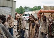 The-walking-dead-episode-807-walkers-935