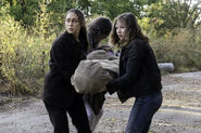 FTWD 6x14 Carrying Mother