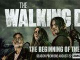 Season 11 (TV Series)