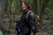 10x17 Daryl