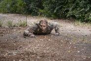 811 Walker crawling
