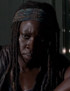 507 Michonne Preview