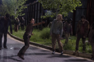 AMC 609 Glenn Shooting Walkers