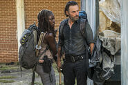 Rick Grimes and Michonne 2 7x12