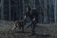 11x04 Dog and Daryl
