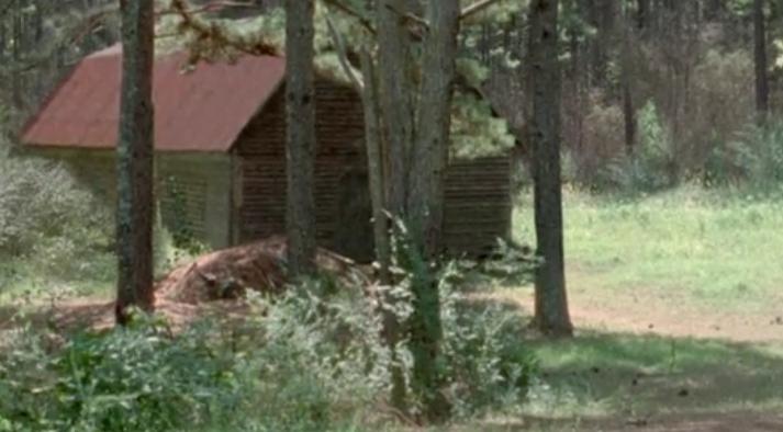 Barn (Season 5)
