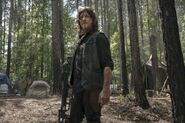9x03 Daryl is a mad dog