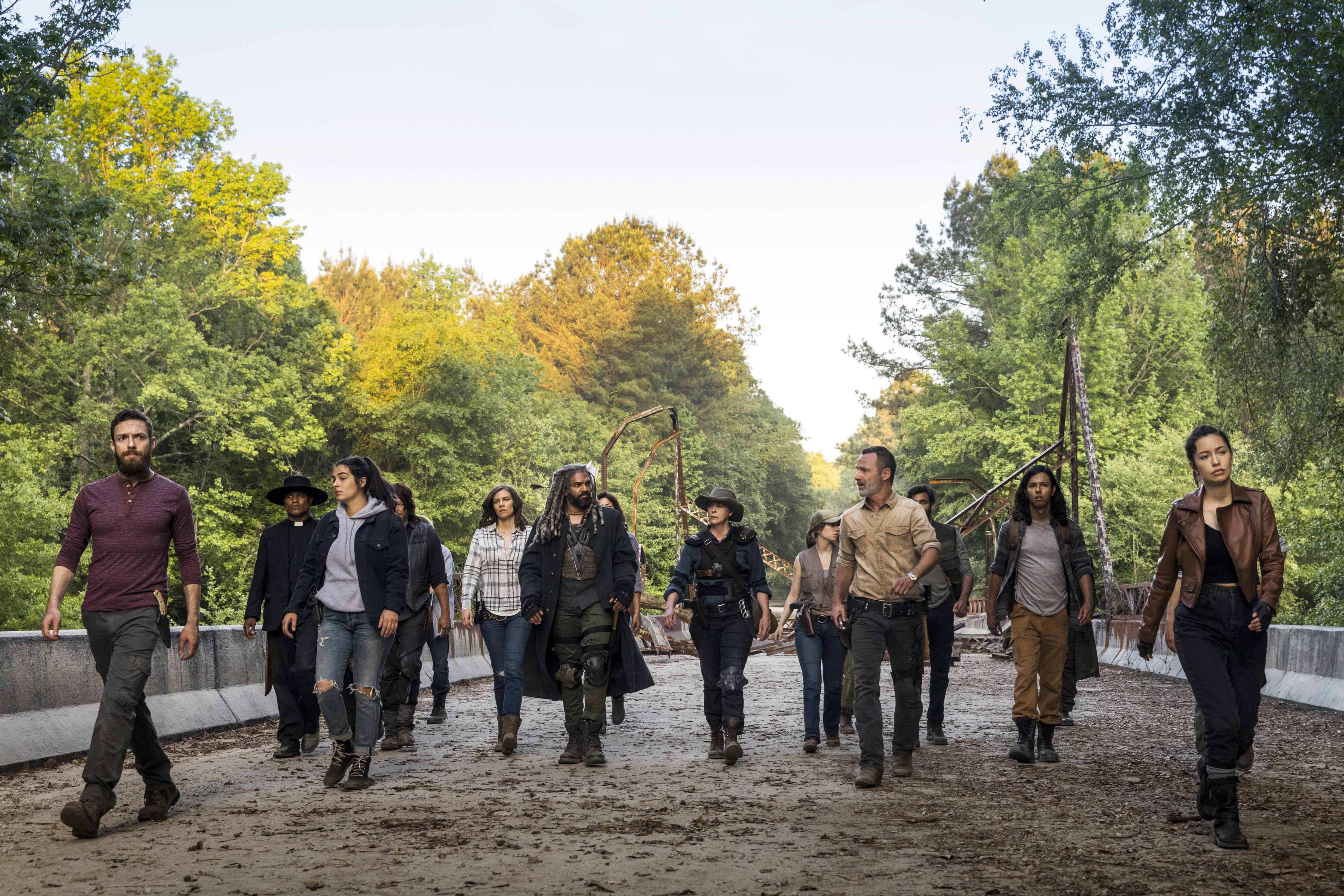 The Survivors (TV Series)