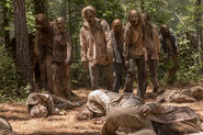 10x01 Walkers attack 2