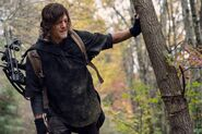 10x18 Daryl in the Wood