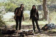FTWD 6x07 What the Hell