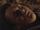 Whisperer 14 (TV Series)