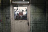 10x16 The Door