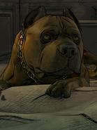 Rosie-0