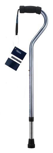 Walking-cane.jpg