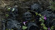 Charred Skeleton Family (One More)