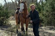 FTWD 6x13 Dwight and Horse
