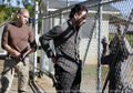 Episode-10-shane-rick-walker