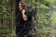 10x21 Daryl
