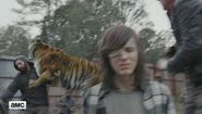 Nobody has expected what tiger from walking dead really is 640 06