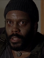 WHW Tyreese Pale