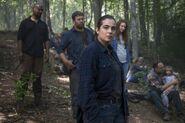 811 Alexandrians in the woods 2