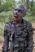 The Walking Dead - 4x14 - The Grove