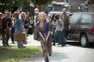 Laurie-holden-andrea-walking-dead-the-suicide-king-season-3-amc