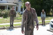 Zombies secrets